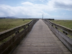 Boardwalk & Discovery Trail
